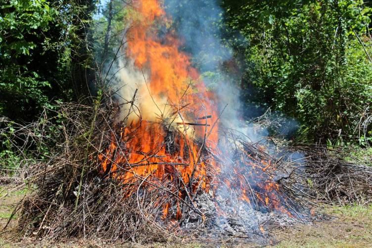 Növényi hulladék égetése