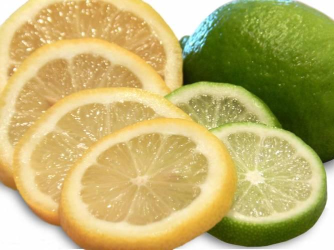 Citrom- és limeszeletek (fotó: pippalou)